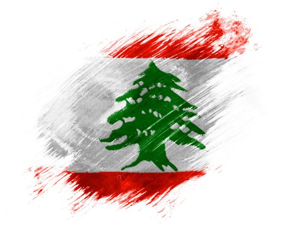Call for Action and in Support of Lebanon