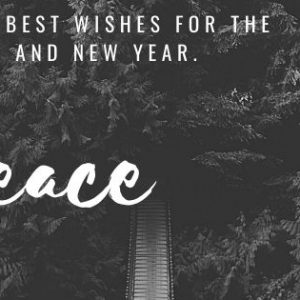 Wishing you moments of Peace and connections with family and friends during this Holiday Season.